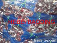 Sell mosquito net nylon net plastic net blue screen fishing net