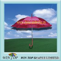 "Sell 23"" auto straight Chinese ladies umbrella"
