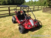 Hammerhead GT80 Go Kart