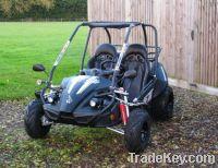 Hammerhead 150cc Go Kart
