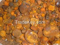 Cow /Ox Gallstones for sale for (wholestone / brokenstone ratio is 80% / 20% )