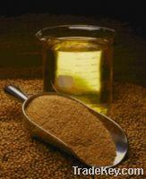 Sell SOYBEAN OIL / SOYBEAN POWDER / SOYBEAN MEAL