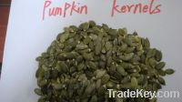 Pealed Pumpkin Kernels ready instock for export