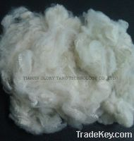 Sell Milky Color Polyester, regenerated