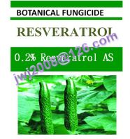 0.2% Resveratrol AS, biofungicide, botanical pesticide, plant extract, good effect on gray mold, root rot