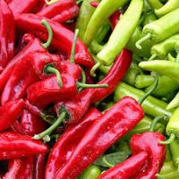 chili vegetable