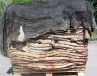 Salted Cow Hides