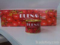 Premium Quality Tomato Paste