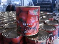 800 gram Canned Tomato Paste
