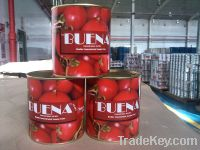 Tomato Paste in Canned 800 grams