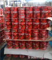 4500g Canned Tomato Paste