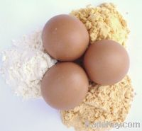 whole and egg yolk Powder for sell