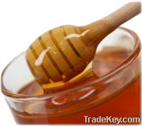 Natural Honey for sell