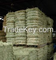 Sell Animal Feeds