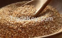 Sesame seeds and other seeds for sell