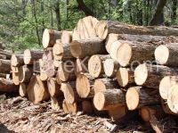 Kiln dried Ash/Oak firewood