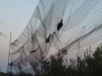 5 Pockets Nylon Anti Bird Live bird Trap Mist Net