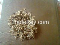 stylo hamata grass seeds Best Quality seed