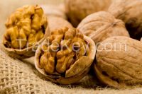 Walnuts with or without shell
