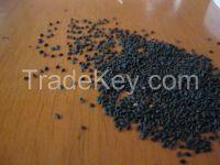 Basil Seeds (Tukmaria)