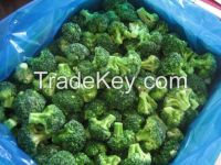 Frozen Broccoli from Fresh raw material