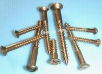 silicon bronze wood screws(fasteners)