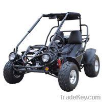 Sell Trailmaster 150cc XRS Buggy Go karts