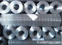 Sell Welded Wire Mesh Roll
