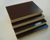 Sell Recycled Construction Film Faced Plywood