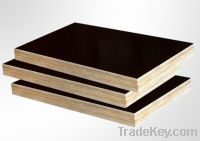 Sell Good Quality with Competitive Prices Black Film Faced Plywood