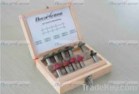 UAE Sell becarve cnc machine cutting bit, wood working bit