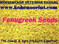 Sell Spices, fenugreek seeds, fennel seeds, coriander seeds, ajwain