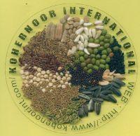 SELL:   LINSEEDS , FLAX SEEDS , Sesame , Oil seed