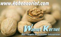 [SPUER DEAL]  Dry Fruits : WALNUT KERNEL , PINE NUT KERNELS , APRICOT