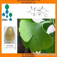 Sell gingko biloba leaf extract with gingko flavone glycosides