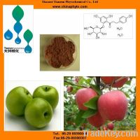 Sell apple extract powder with apple polyphenols