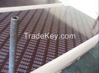 Sell brown film faced plywood
