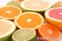 Sell Fresh Citrus Fruit