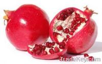 Sell  Fresh Pomegranates