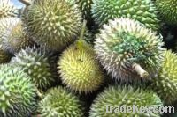 Sell  Fresh Durians