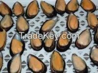 Frozen half shell blue mussel