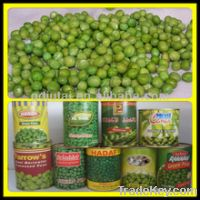 Sell Canned Mixed Vegetables from China
