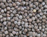 Perilla Seeds For Sale