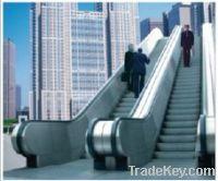 Sell Escalator of public transport type