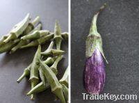 Cauliflower/Eggplant/Okra