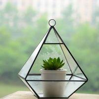glass plant cube