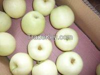 Fresh Golden Delicious Apple
