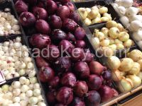 Fresh Red, Yellow and White Onions For Sale