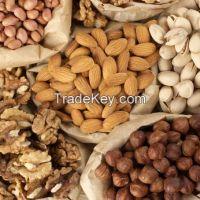 Brazil Macadania Hazel Pistachio Cashew Nuts & Kernels