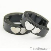 Sell Hot! Fashion Jewelry Stainless Steel Earring (EQ8030)